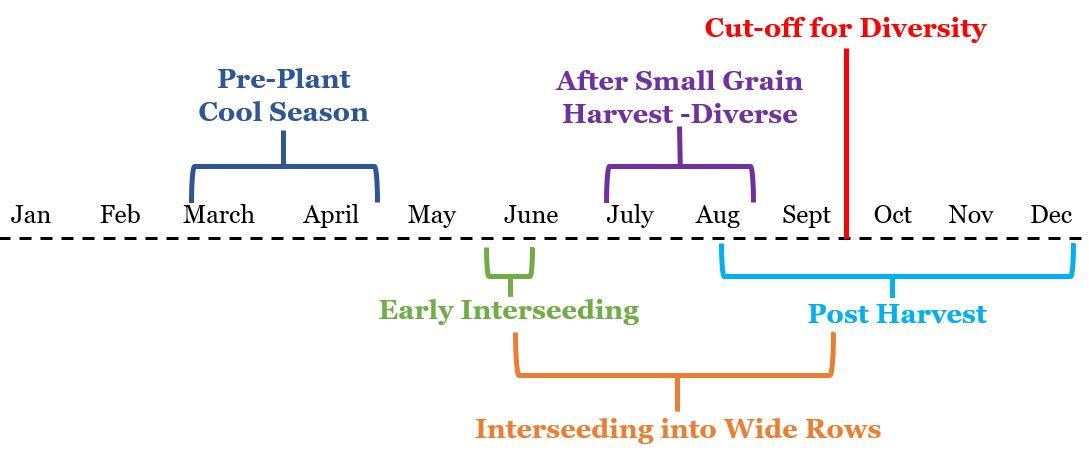 u.2.Planting Timeline.JPG